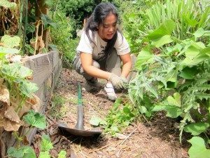 garden_6156630413_7569cbae79_b